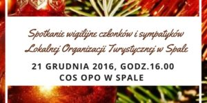 wigilia-lot-2016-grafika